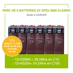 """6 Batteries 2v OPZs 3000 """"Classic"""""""