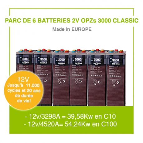 "6 Batteries 2v OPZs 3000 ""Classic"""